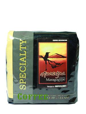 Кофе Nicaragua Maragogype в зернах 500 гр