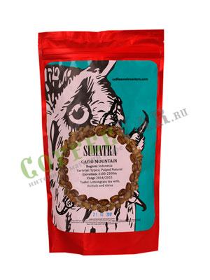 Кофе Owl в зернах Sumatra Gayo Mountain 250 гр